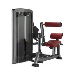 Life Fitness Insignia Extension de Dos (Musculación) machines de charges guidees professionnels progym